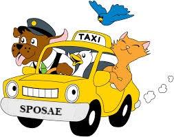 Servizio taxi trasporto auto per spose e matrimonio